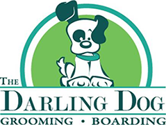 The Darling Dog
